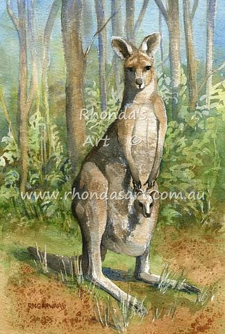 Eastern Grey Kangaroo 2