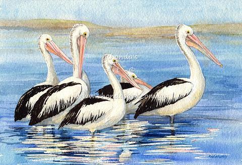 Five Pelicans 22