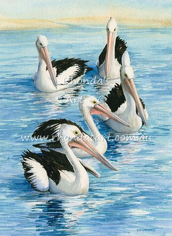 Five Pelicans swimming 28