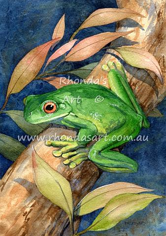 Green Frog 2