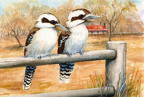 Kookaburras on fence 32