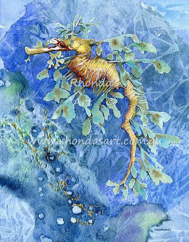 Leafy Sea Dragon M1