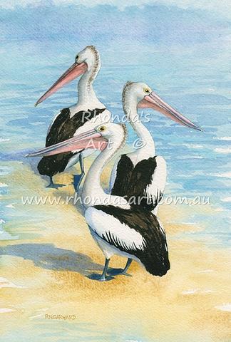 Pelicans 39
