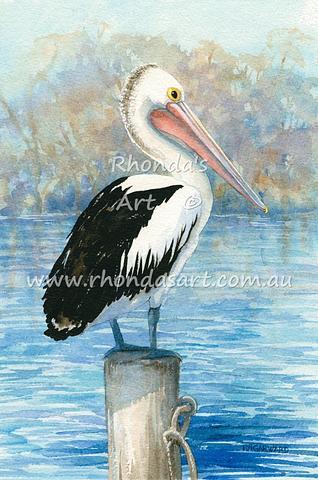Pelican 32