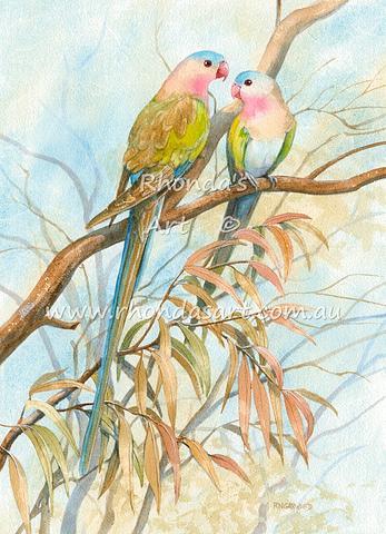 Princess Parrots 1