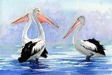 Three Pelicans 2