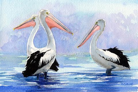 Three Pelicans 2