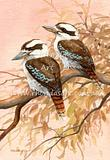 Two Kookaburras 19