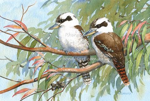 Two Kookaburras 54