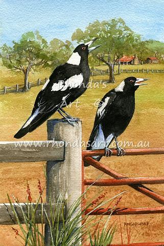 Magpies  26