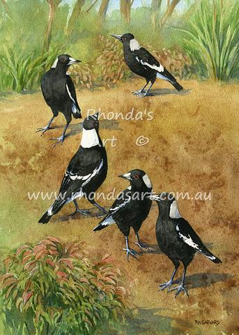 Magpies at Home