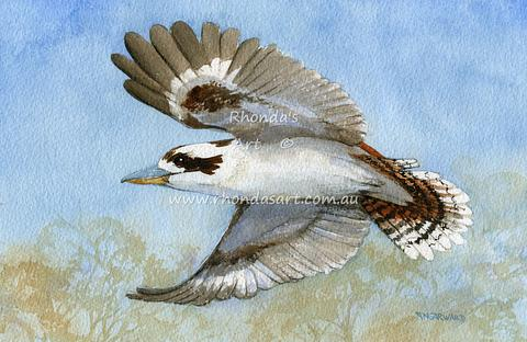 Flying Kookaburra