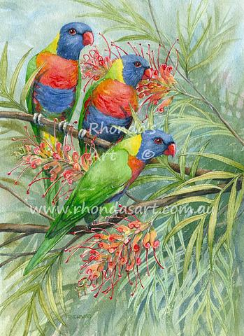 Three Rainbow Lorikeets