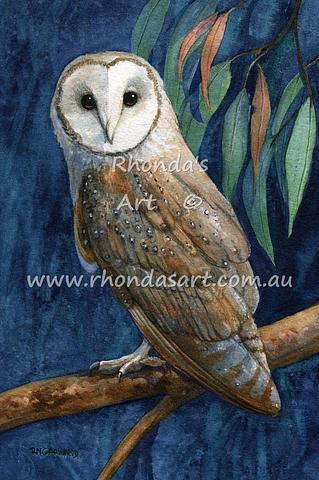 Barn Owls 2