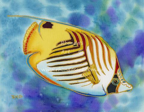 Threadfin  Angelfish