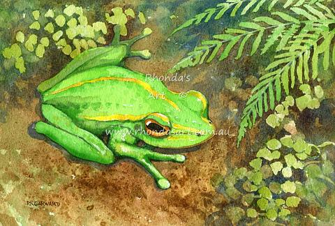 Green Golden Bell Frog