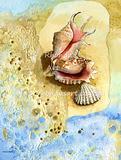 Shells M1