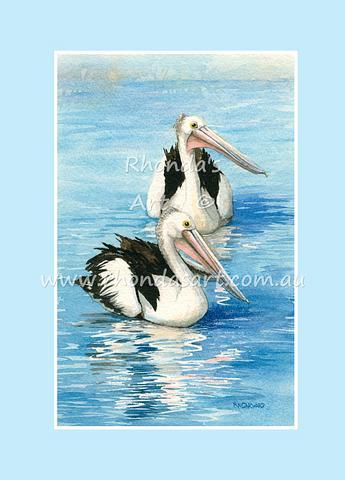 Pelican 31
