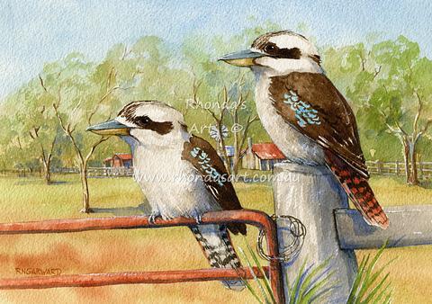 Two Kookaburras 68