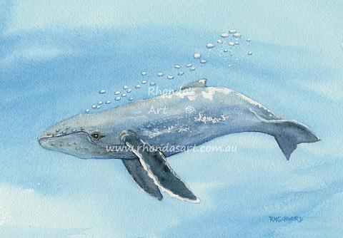 Original painting from Tilly - Humpback Whale Calf