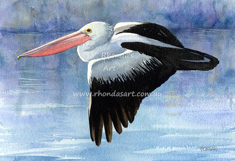 Flying Pelican 6