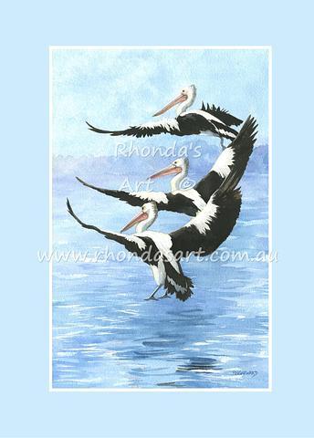 Pelican 3L