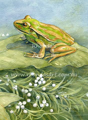 Green Golden Bell Frog