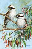 Kookaburras in a Tree 70