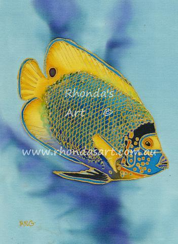 Yellow Faced Angelfish