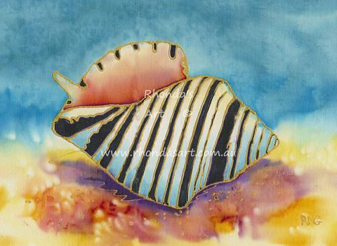 Striped Shell
