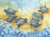Little Turtles M1