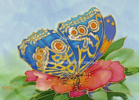 Patterned Butterfly