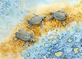 Three Turtles M2