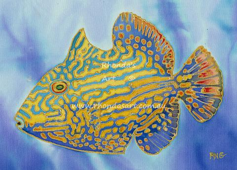 Blue Lined Triggerfish